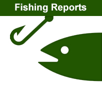 Honeoye lake fishing charters tennity 39 s guide service for Finger lakes fishing report